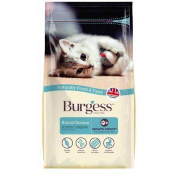 Burgess Kitten Chicken