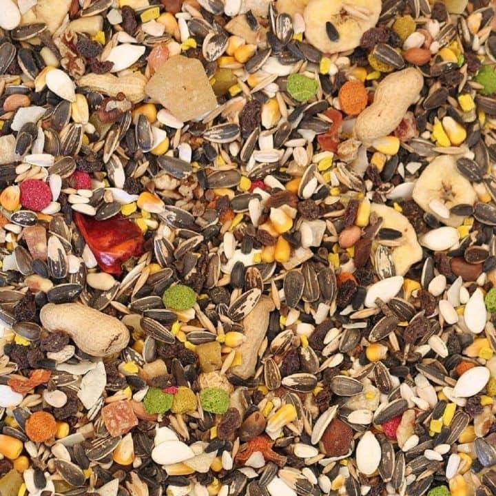 Harrisons Premier Parrot Food