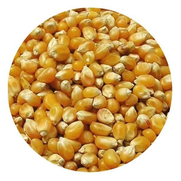 Bartholomews Whole Maize