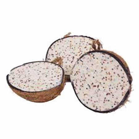Fat Filled Half Coconut
