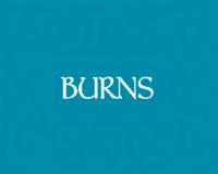 Burns Sensitive Adult & Senior Dog Food