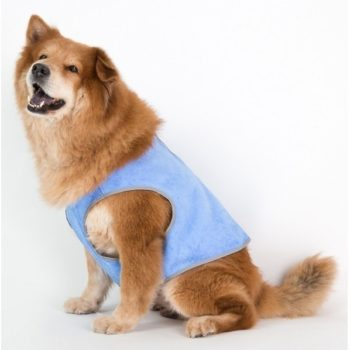 Coco Jojo Cooling Vest