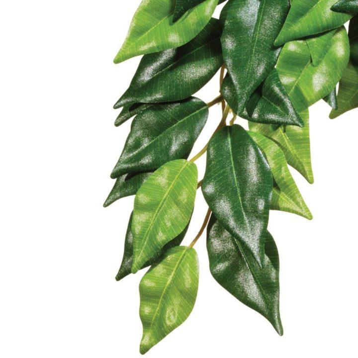 Exo Terra Hanging Rainforest Plant - Ficus (Silk)