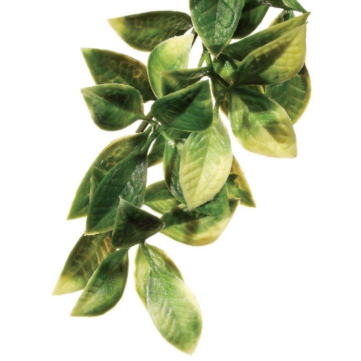 Exo Terra Hanging Rainforest Plant - Mandarin (Plastic)