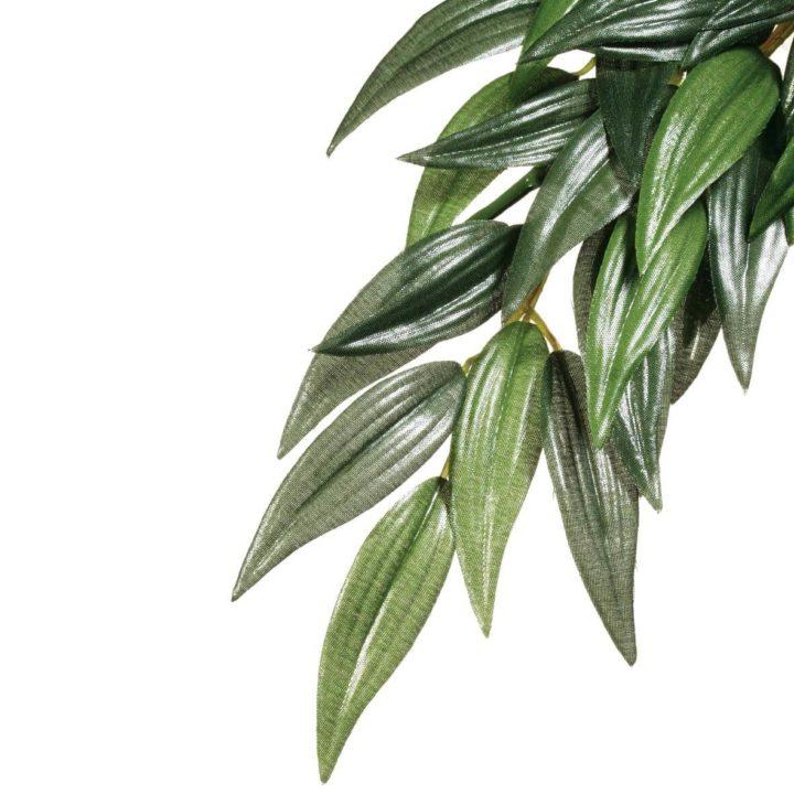Exo Terra Hanging Rainforest Plant - Rucus (Silk)