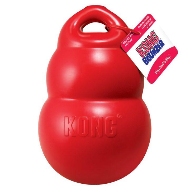 KONG® Bounzer™ - 2 Sizes