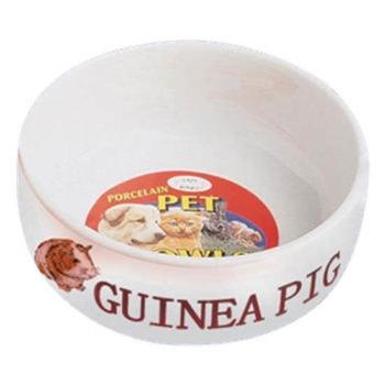 Lazy Bones Porcelain Guinea Pig Bowl